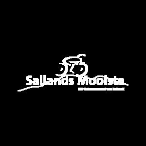 logo_sallandsmooiste